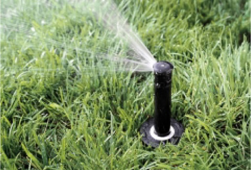 Namakalni sistem za travo je najboljša rešitev za vašo travo